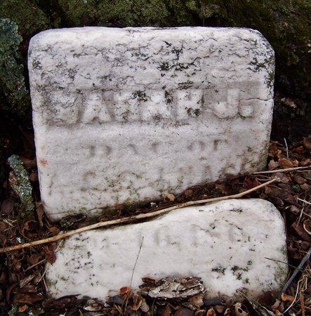 NASH, SARAH J. - Kalamazoo County, Michigan   SARAH J. NASH - Michigan Gravestone Photos