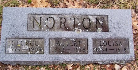 NORTON, GEORGE - Kalamazoo County, Michigan | GEORGE NORTON - Michigan Gravestone Photos