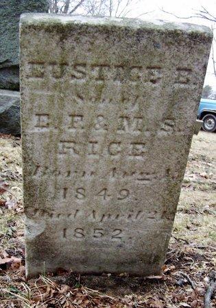 RICE, EUSTICE - Kalamazoo County, Michigan | EUSTICE RICE - Michigan Gravestone Photos