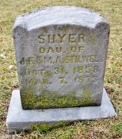SHYER, HETTIE - Kalamazoo County, Michigan | HETTIE SHYER - Michigan Gravestone Photos