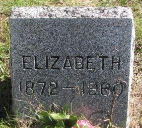 SIMPSON, ELIZABETH - Kalamazoo County, Michigan | ELIZABETH SIMPSON - Michigan Gravestone Photos