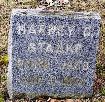 STAAKE, HARREY - Kalamazoo County, Michigan | HARREY STAAKE - Michigan Gravestone Photos