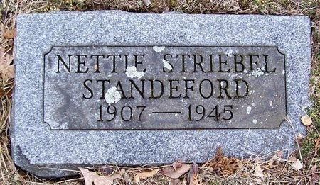 STANDEFORD, NETTIE - Kalamazoo County, Michigan | NETTIE STANDEFORD - Michigan Gravestone Photos