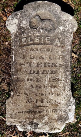 STERNS, ELSIE A. - Kalamazoo County, Michigan | ELSIE A. STERNS - Michigan Gravestone Photos
