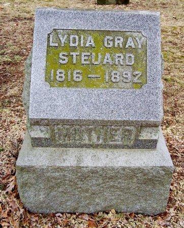 STEUARD, LYDIA - Kalamazoo County, Michigan   LYDIA STEUARD - Michigan Gravestone Photos