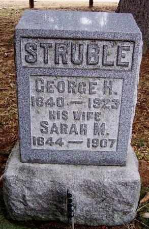 STRUBLE, SARAH M. - Kalamazoo County, Michigan | SARAH M. STRUBLE - Michigan Gravestone Photos
