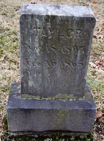 TAYLOR, BETSEY - Kalamazoo County, Michigan | BETSEY TAYLOR - Michigan Gravestone Photos