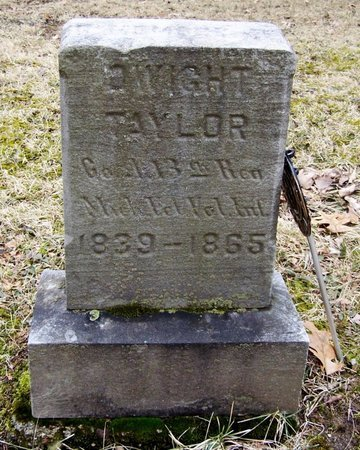 TAYLOR, DWIGHT - Kalamazoo County, Michigan | DWIGHT TAYLOR - Michigan Gravestone Photos