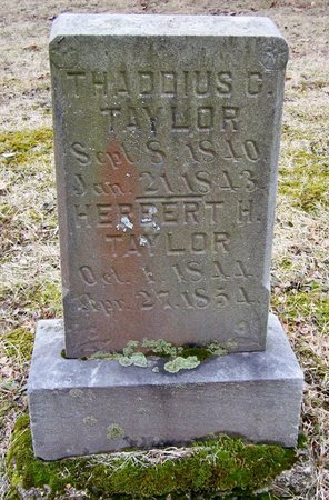 TAYLOR, HERBERT - Kalamazoo County, Michigan | HERBERT TAYLOR - Michigan Gravestone Photos