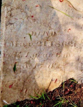 VANORMAN, CHARLES S. - Kalamazoo County, Michigan | CHARLES S. VANORMAN - Michigan Gravestone Photos