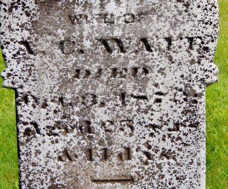 WAIT, MARY - Kalamazoo County, Michigan | MARY WAIT - Michigan Gravestone Photos
