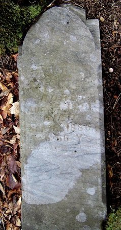 WHITE, SARAH A. - Kalamazoo County, Michigan | SARAH A. WHITE - Michigan Gravestone Photos