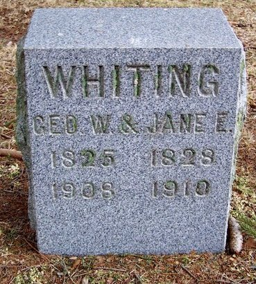WHITING, JANE E. - Kalamazoo County, Michigan | JANE E. WHITING - Michigan Gravestone Photos