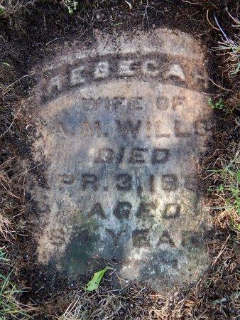 WILLSON, REBECCA H. - Kalamazoo County, Michigan | REBECCA H. WILLSON - Michigan Gravestone Photos