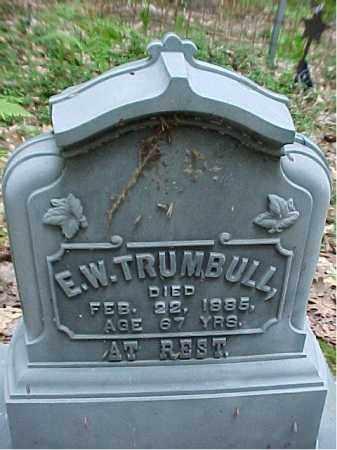 TRUMBULL, EDMOND  WHEATON - Leelanau County, Michigan | EDMOND  WHEATON TRUMBULL - Michigan Gravestone Photos