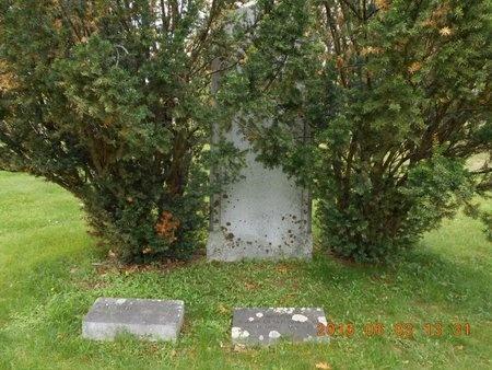 ADRIANCE, FAMILY - Marquette County, Michigan | FAMILY ADRIANCE - Michigan Gravestone Photos