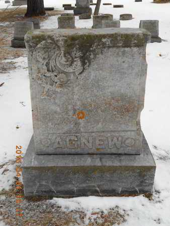 AGNEW, FAMILY - Marquette County, Michigan | FAMILY AGNEW - Michigan Gravestone Photos