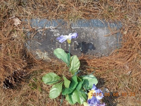 ANDERSON, JOHN P. - Marquette County, Michigan | JOHN P. ANDERSON - Michigan Gravestone Photos