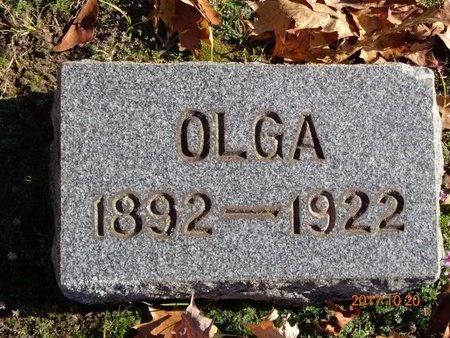 ANDERSON, OLGA - Marquette County, Michigan | OLGA ANDERSON - Michigan Gravestone Photos