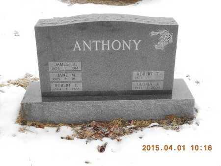 ANTHONY, JANE M. - Marquette County, Michigan | JANE M. ANTHONY - Michigan Gravestone Photos