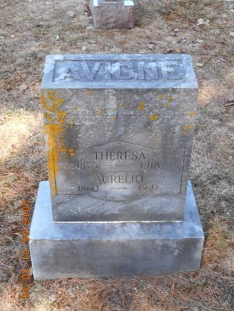 AVIGNE, THERESA - Marquette County, Michigan | THERESA AVIGNE - Michigan Gravestone Photos