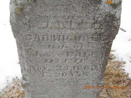 CARMICHAEL BALL, JANET - Marquette County, Michigan | JANET CARMICHAEL BALL - Michigan Gravestone Photos