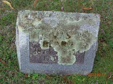 BEARD, THOMAS W. - Marquette County, Michigan | THOMAS W. BEARD - Michigan Gravestone Photos