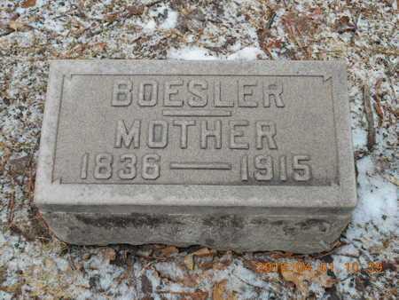 BOESLER, WILHELMINA - Marquette County, Michigan | WILHELMINA BOESLER - Michigan Gravestone Photos
