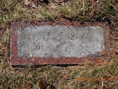 BORCHERT, HERBERT - Marquette County, Michigan   HERBERT BORCHERT - Michigan Gravestone Photos