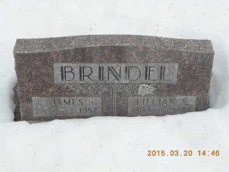 BRINDEL, LILLIAN E. - Marquette County, Michigan | LILLIAN E. BRINDEL - Michigan Gravestone Photos