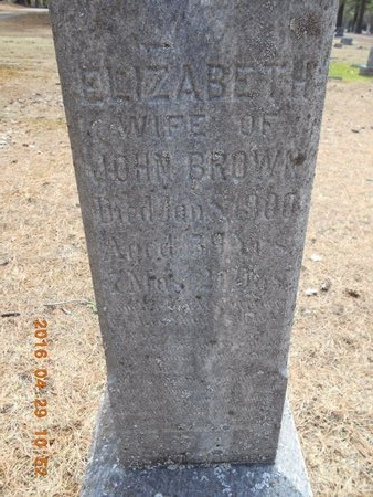 BROWN, ELIZABETH - Marquette County, Michigan | ELIZABETH BROWN - Michigan Gravestone Photos