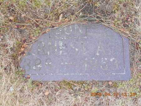 BROWN, ERNEST A. - Marquette County, Michigan | ERNEST A. BROWN - Michigan Gravestone Photos