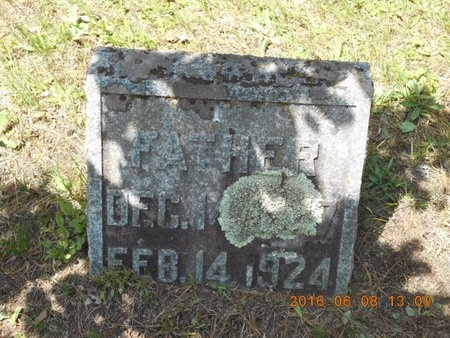 BROWN, FRANCIS - Marquette County, Michigan | FRANCIS BROWN - Michigan Gravestone Photos