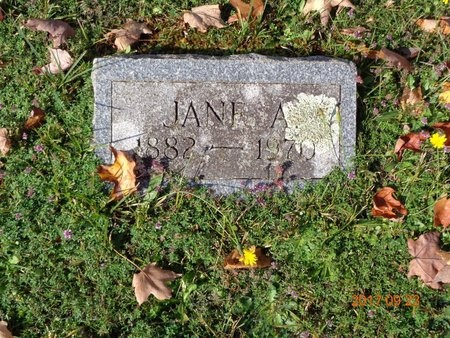 BROWN, JANE A. - Marquette County, Michigan   JANE A. BROWN - Michigan Gravestone Photos
