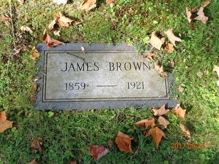 BROWN, JAMES - Marquette County, Michigan | JAMES BROWN - Michigan Gravestone Photos