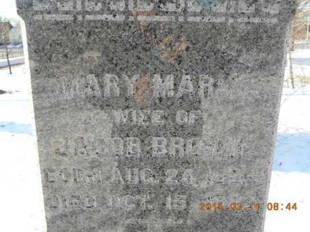 BROWN, MARY MARIA - Marquette County, Michigan | MARY MARIA BROWN - Michigan Gravestone Photos