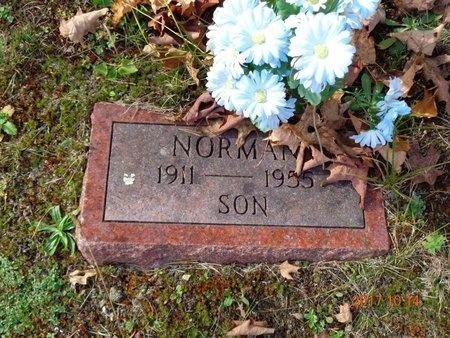 BROWN, NORMAN - Marquette County, Michigan | NORMAN BROWN - Michigan Gravestone Photos