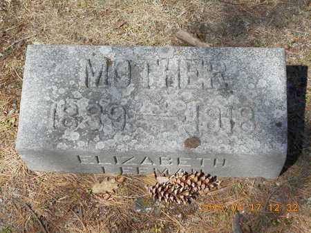 LEEMAN BURROWS, ELIZABETH - Marquette County, Michigan | ELIZABETH LEEMAN BURROWS - Michigan Gravestone Photos