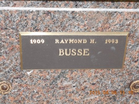 BUSSE, RAYMOND H. - Marquette County, Michigan | RAYMOND H. BUSSE - Michigan Gravestone Photos