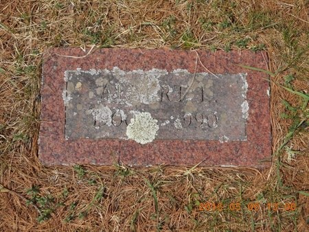 CARLSON, ALBERT L. - Marquette County, Michigan | ALBERT L. CARLSON - Michigan Gravestone Photos