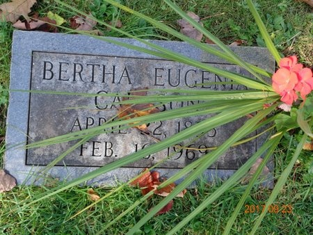 CARLSON, BERTHA EUGENIA - Marquette County, Michigan   BERTHA EUGENIA CARLSON - Michigan Gravestone Photos