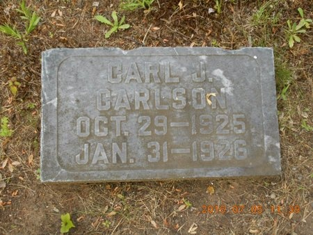 CARLSON, CARL J. - Marquette County, Michigan | CARL J. CARLSON - Michigan Gravestone Photos