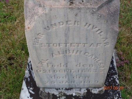 CARLSON, CARL ALBIN - Marquette County, Michigan | CARL ALBIN CARLSON - Michigan Gravestone Photos