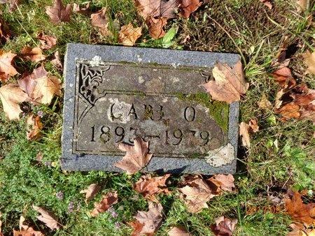 CARLSON, CARL OTTO - Marquette County, Michigan   CARL OTTO CARLSON - Michigan Gravestone Photos