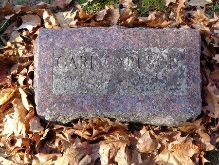 CARLSON, CARL - Marquette County, Michigan   CARL CARLSON - Michigan Gravestone Photos