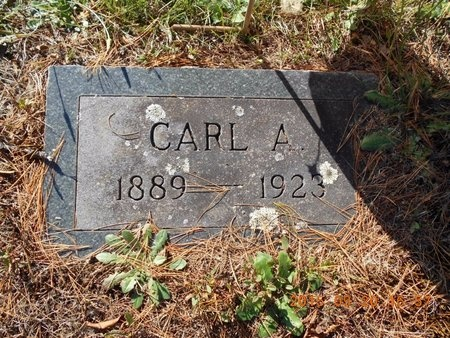CARLSON, CARL A. - Marquette County, Michigan | CARL A. CARLSON - Michigan Gravestone Photos