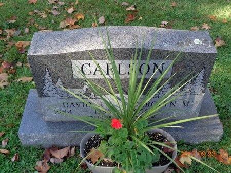 CARLSON, DAVID J. - Marquette County, Michigan | DAVID J. CARLSON - Michigan Gravestone Photos