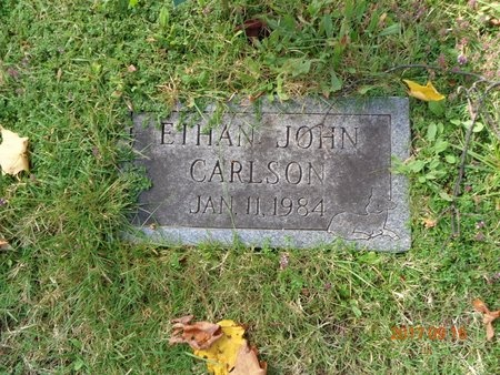 CARLSON, ETHAN JOHN - Marquette County, Michigan   ETHAN JOHN CARLSON - Michigan Gravestone Photos
