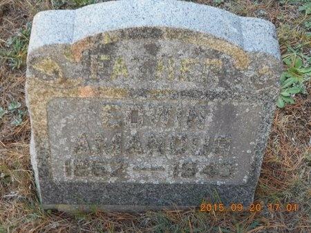 CARLSON, EDWIN AMANDUS - Marquette County, Michigan | EDWIN AMANDUS CARLSON - Michigan Gravestone Photos