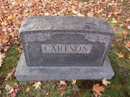 CARLSON, FAMILY - Marquette County, Michigan   FAMILY CARLSON - Michigan Gravestone Photos